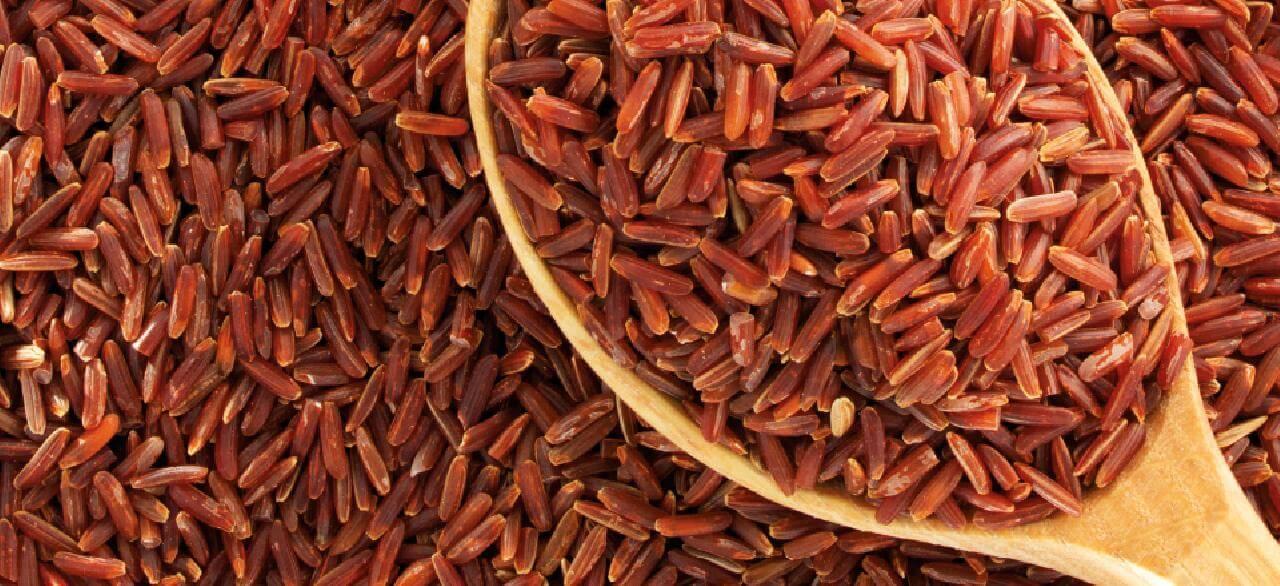 røde ris kolesterol