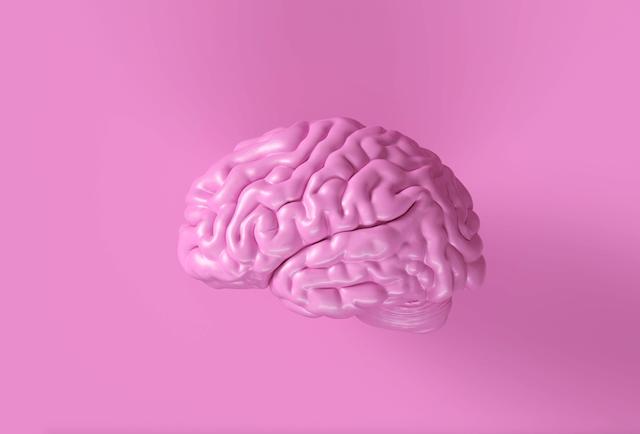 Vores hjerne styrer os, men vi skal også huske at fodre den korrekt