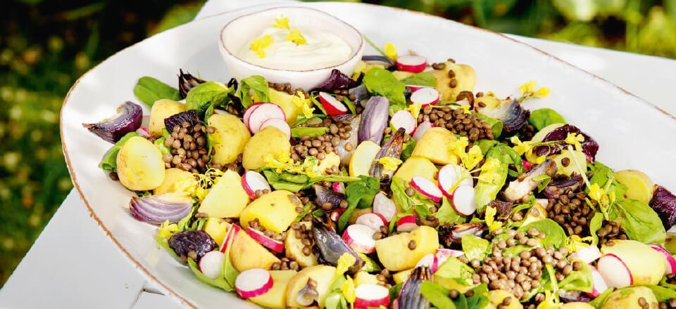 Salat med Du Puy linser er skønt tilbehør, der kan forberedes i god tid