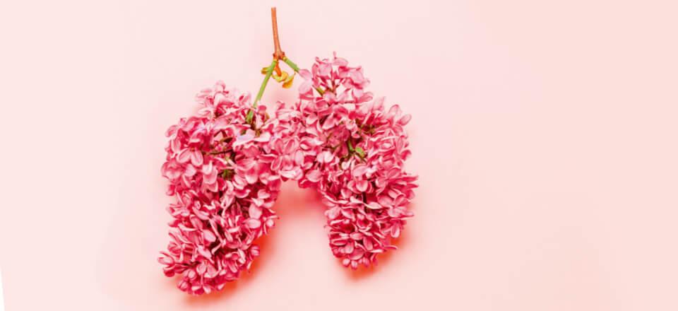 Lungen – det svage organ