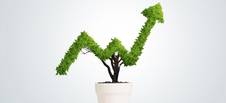 Pensionsopsparing: Grøn helt eller sort skurk?